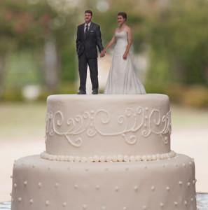 3d-figures-cake