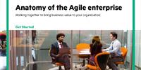 Anatomy of the Agile enterprise