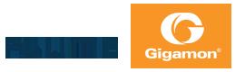 Flume Marketing | Gigamon