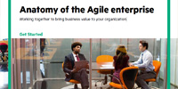 Anatomy of the Agile enterprise